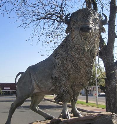 Pictured is the white buffalo statue outside the Scurry County Courthouse.